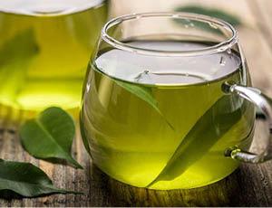 Autumn meditation wellness retreat_Fresh herbal tea
